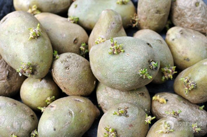 發芽的土豆吃了會中毒!但這兩種芽菜,吃了后營養會翻倍!