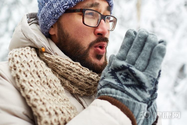 冬季進補重要性你知道嗎?5種食物陪你健康過冬