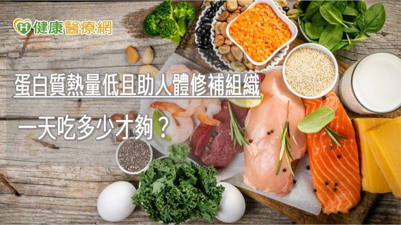 蛋白質熱量低且助人體修補組織 一天吃多少才夠?