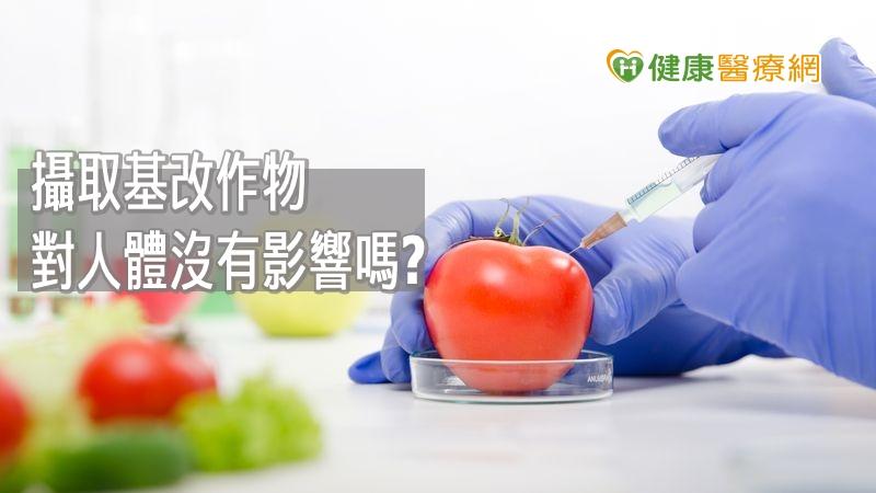基改食品對身體沒影響? 食藥署這樣說明_紫錐花原料