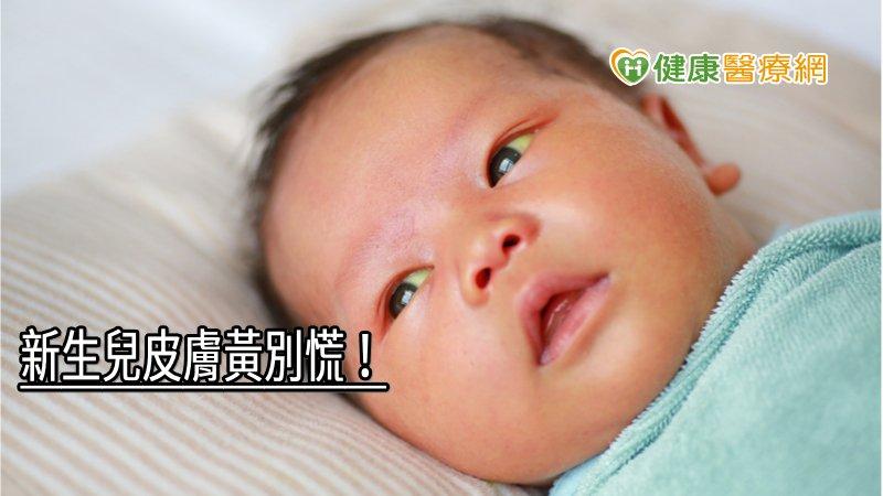 新生兒皮膚黃別慌! 小兒科醫師解答黃疸常見問題