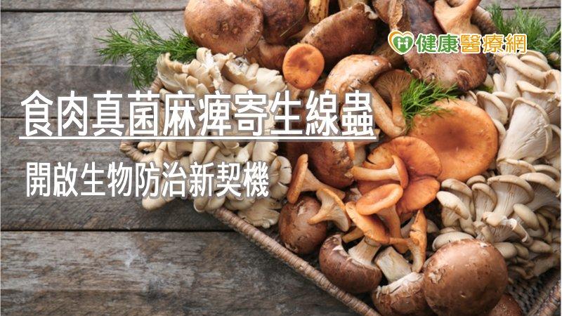 食肉真菌麻痺寄生線蟲 開啟生物防治新契機_多囊性卵巢症候群