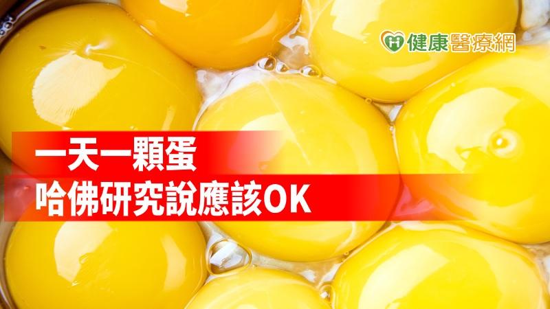 每天吃一顆蛋似乎OK BMJ研究:找無心血管疾病關聯_菜花
