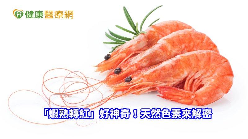 「蝦熟轉紅」好神奇!天然色素來解密_紫錐花萃取